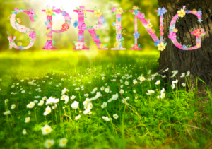Naturopathic Tips This Spring Posoter